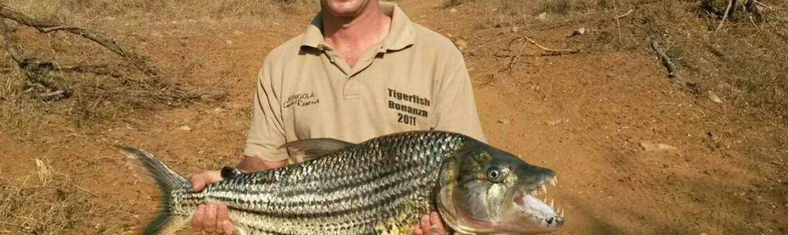 7.5kg Tiger Caught at Jozini