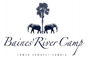 106. BAINES RIVER CAMP ZAMBIA